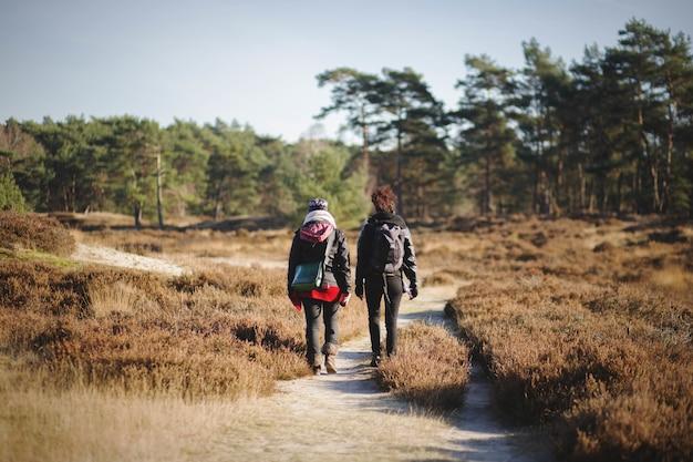 Schöne landschaft mit zwei wanderern, die an einem sonnigen herbsttag in der natur spazieren gehen