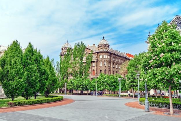 Schöne landschaft und stadtansicht von budapest
