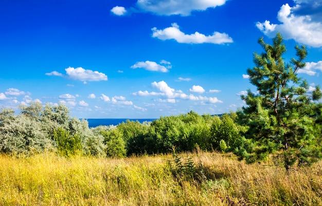 Schöne landschaft von kaniv reservoir, ukraine, am sonnigen tag mit hellem bewölktem himmel