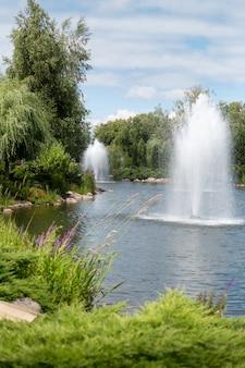Schöne landschaft von springbrunnen im teich im formalen garten