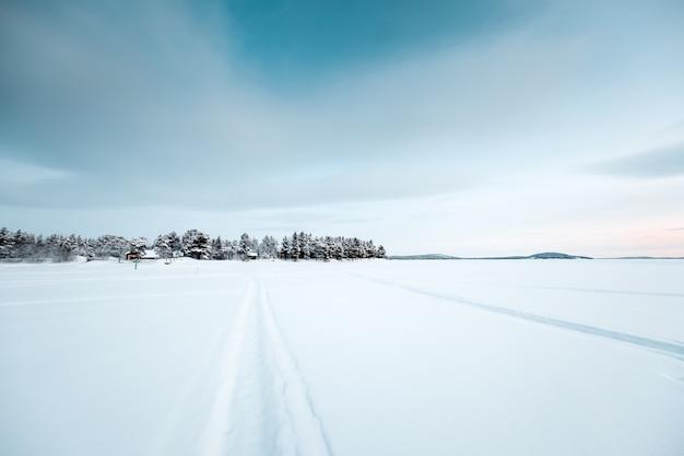 Schöne landschaft von vielen blattlosen bäumen in einem schneebedeckten land während des sonnenuntergangs