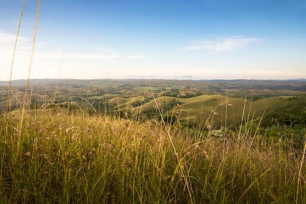 Schöne landschaftsansicht mit grünen wiesen