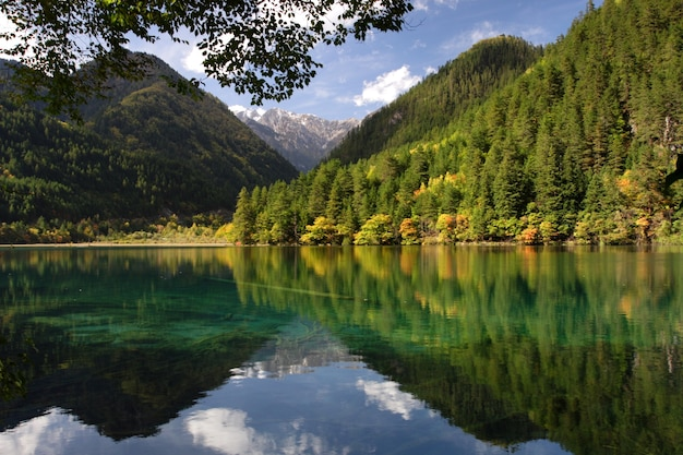 Schöne landschaftsaufnahme eines sees und grüner berge im nationalpark jiuzhaigou in china