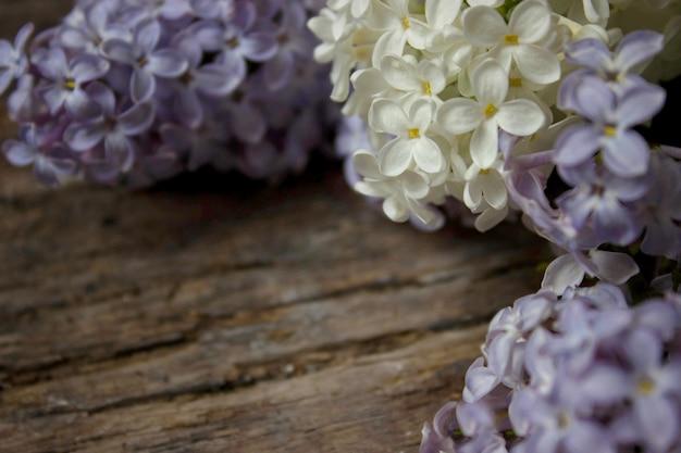 Schöne lila blumen auf rustikaler weißer hölzerner hintergrundoberseite vi. raum, konzept.