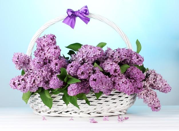 Schöne lila blumen im korb auf blau