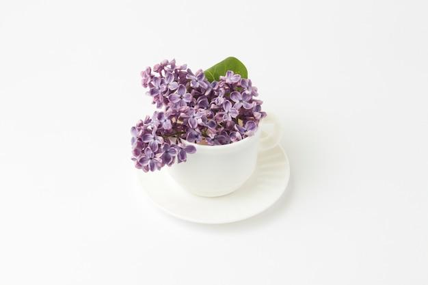 Schöne lila blumen in einer weißen tasse auf einem weißen hintergrund.