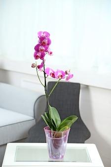 Schöne lila orchidee im topf auf dem tisch im zimmer