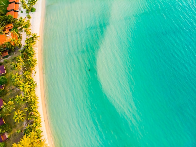 Schöne luftaufnahme des strandes und des meeres mit kokosnusspalme