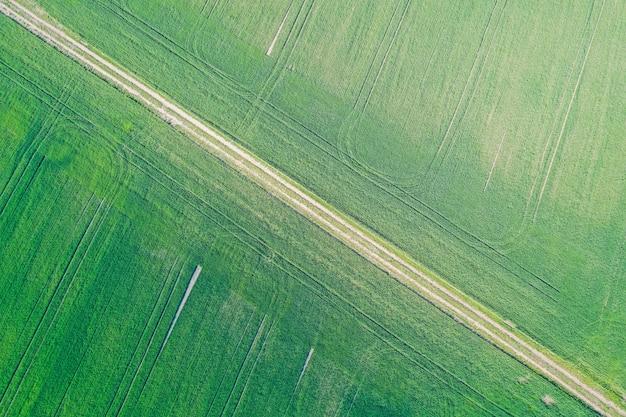 Schöne luftaufnahme eines grünen landwirtschaftlichen feldes