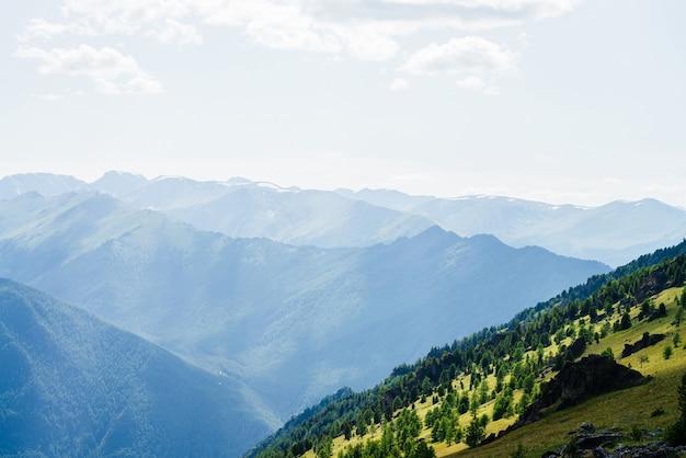 Schöne luftaufnahme zum grünen waldberghang mit klippen und großen schneebedeckten bergen