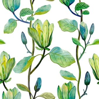 Schöne magnolie blüht die gezeichnete aquarellhand