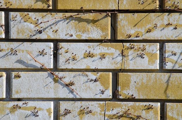 Schöne makrobeschaffenheit von steinen, korrosion, hölzerne hauptgegenstände.
