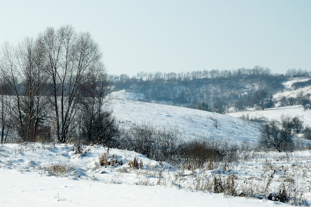 Schöne malerische winterlandschaftshügel und laubbäume sonniger frostiger wolkenloser tag