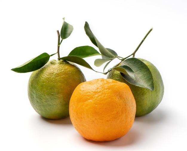 Schöne mandarine lokalisiert auf weißem hintergrund
