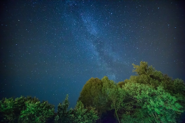 Schöne nachthimmellandschaft mit sternen und bäumen
