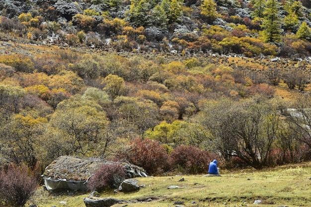 Schöne natur des bunten herbstes in der reserve der nationalen ebene yading