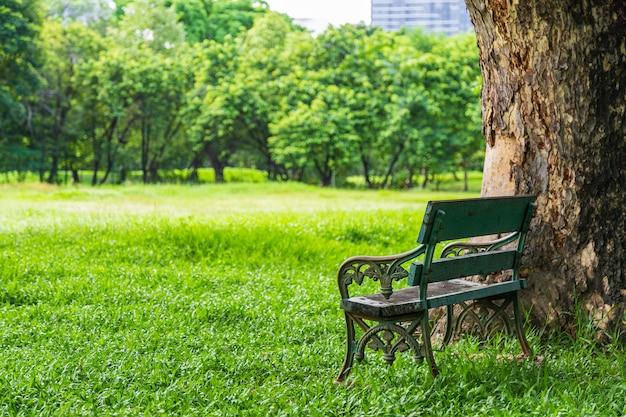Schöne natur im park mit bank unter dem baum.