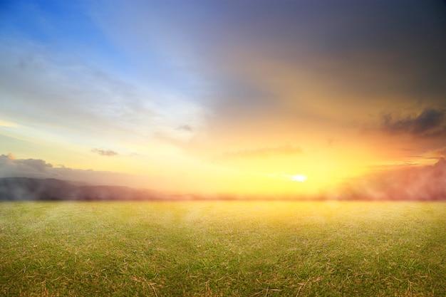 Schöne natur mit frischem gras und morgensonnenaufgang