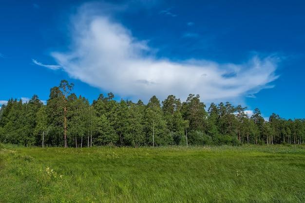 Schöne naturlandschaft.