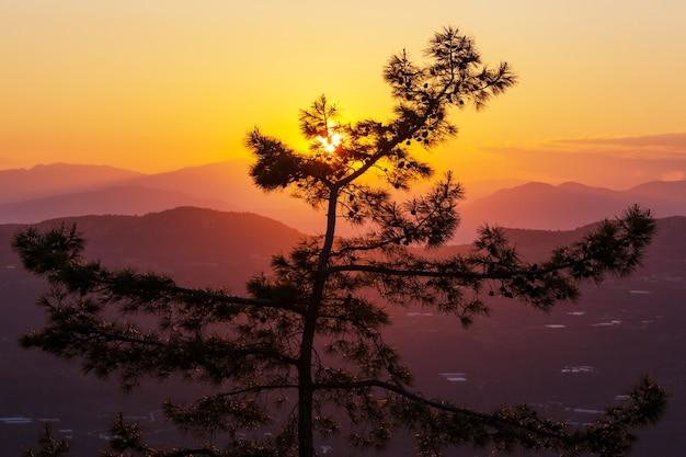 Schöne naturlandschaften in den bergen der türkei. lykischer weg ist unter wanderern berühmt.