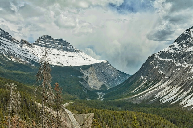 Schöne niedrige winkellandschaft der verschneiten kanadischen rocky mountains