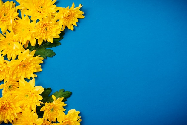 Schöne orange chrysanthemen liegen auf einem blauen tisch.