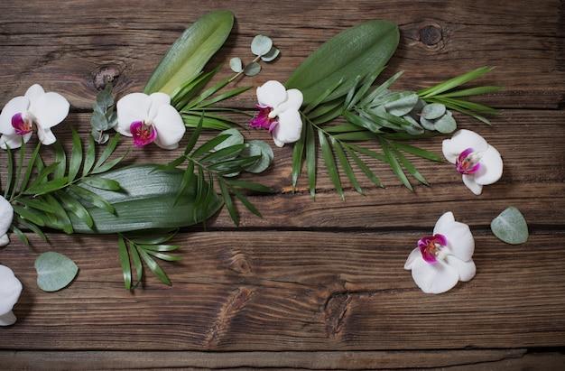 Schöne orchideen und tropische blätter auf altem hölzernem hintergrund
