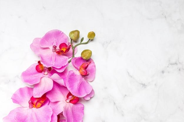 Schöne orchideenblume auf marmoroberfläche