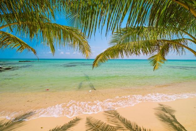 Schöne paradiesinsel mit meer- und strandlandschaft