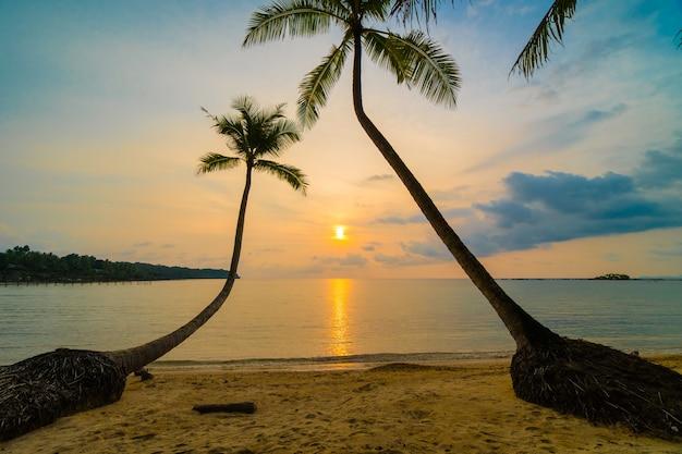 Schöne paradiesinsel mit strand und meer um kokosnusspalme