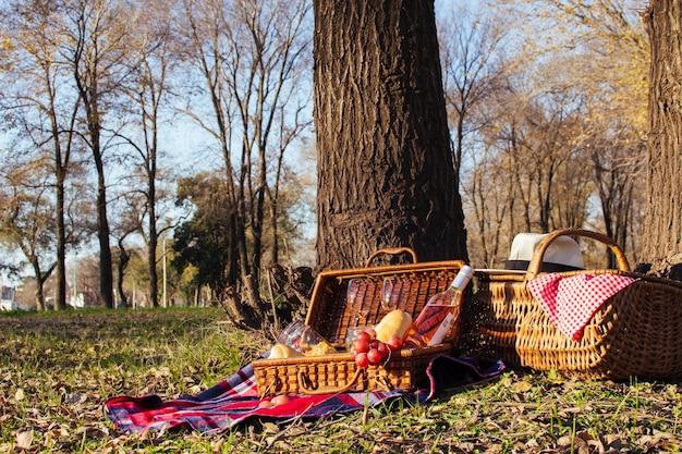 Schöne picknickanordnung der vorderansicht