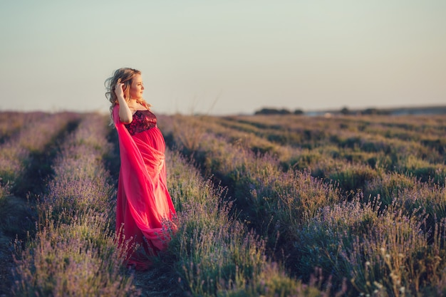 Schöne provenzalschwangere frau, die in lavendelfeldbeobachtung auf sonnenuntergang hält korb mit lavandablumen entspannt. serie. verführerisches mädchen mit lila lavendel. blonde dame im blütenfeld