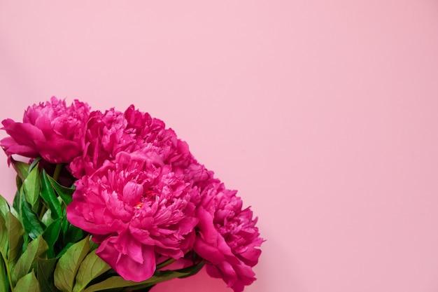 Schöne rosa pfingstrosenblumenstraußnahaufnahme auf rosa hintergrund. ansicht von oben. flach liegen