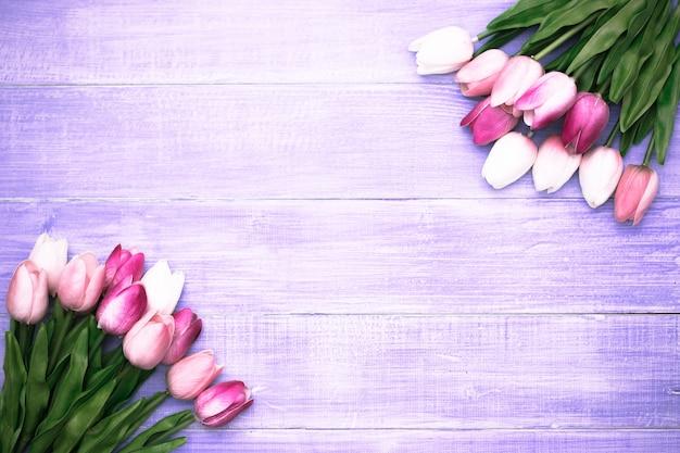 Schöne rosa tulpe blüht auf violettem hölzernem hintergrund mit kopienraum.