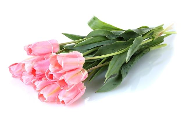 Schöne rosa tulpen lokalisiert auf weiß