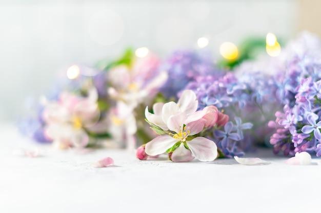 Schöne rosa und lila blumen auf unscharfem hellem hintergrund mit lichtern. frühlingsblumenhintergrund mit platz für text.
