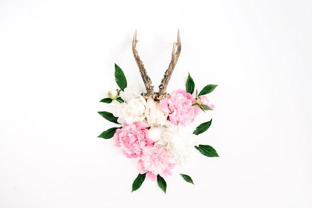 Schöne rosa und weiße pfingstrose blüht blumenstrauß und ziegenhörner auf weißem hintergrund. flache lage, ansicht von oben