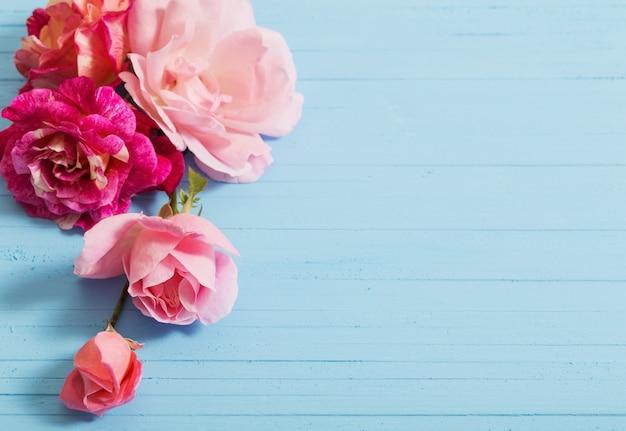 Schöne rosen auf blauem hölzernem hintergrund