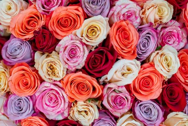 Schöne rosen für hochzeit und verlobung.