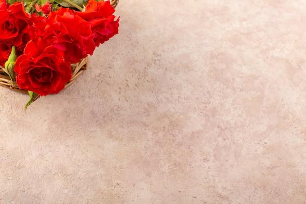 Schöne rote blumen der draufsicht der roten rosen lokalisiert auf tisch und rosa
