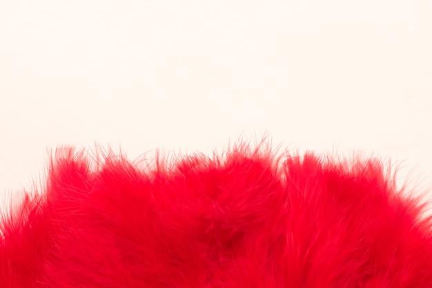 Schöne rote federn auf weißem hintergrund