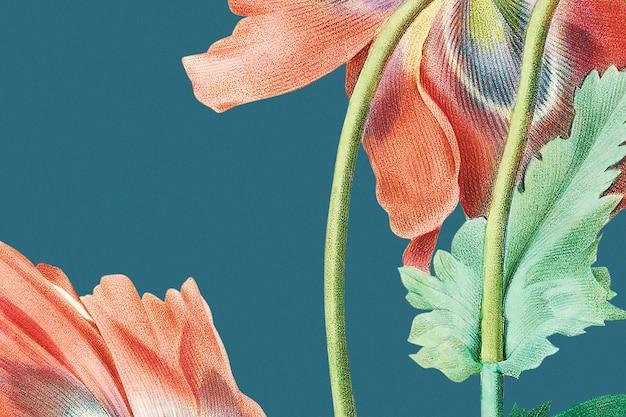 Schöne rote mohnblumenhintergrundillustration, remixed von gemeinfreien kunstwerken
