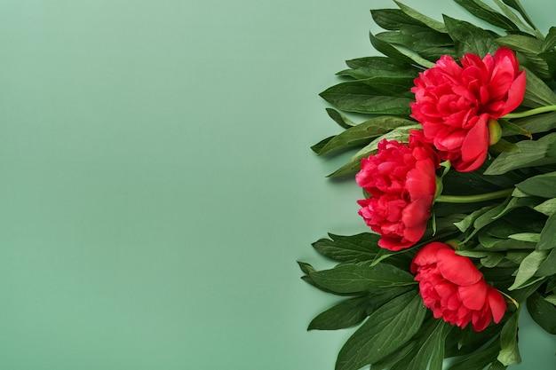 Schöne rote pfingstrosen blüht blumenstrauß über grünem hintergrund, draufsicht, kopienraum, flach. valentinstag, muttertag hintergrund.