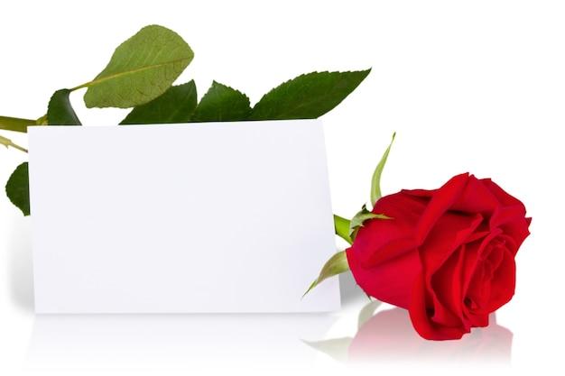 Schöne rote rose und karte auf weißem hintergrund
