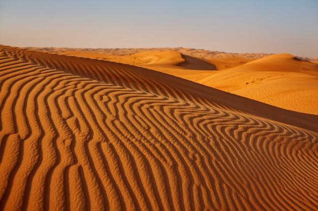 Schöne sanddünen in der wüste bei sonnenuntergang