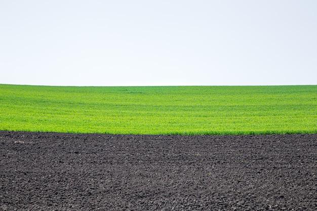 Schöne schwarze erdfelder in der ukraine. landwirtschaftliche ländliche landschaft