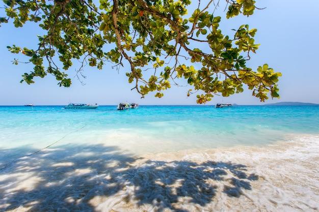 Schöne seelandschaft mit tropischer küste und dem hochgeschwindigkeitsboot in tachai-insel