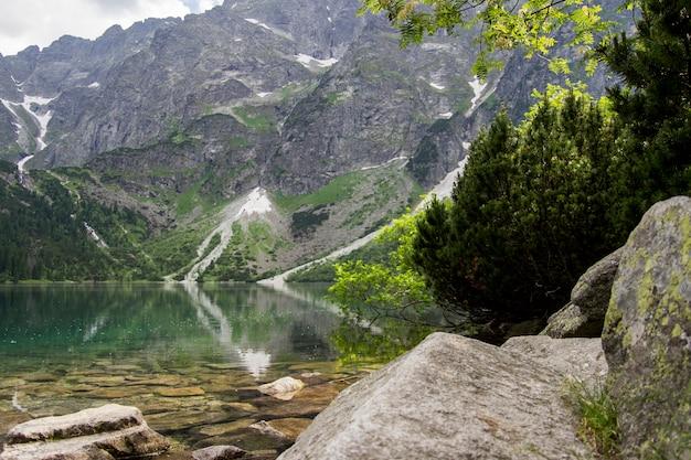 Schöne sommer alpine berg seeblick bedeckt in grünen bäumen mit einem stein vor und wolken im himmel. reflexion des berges im wasser. kristallklarem wasser. europa, alpen.