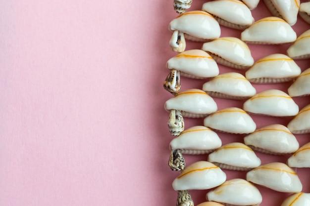 Schöne sommerkaurimuscheln auf rosa wand
