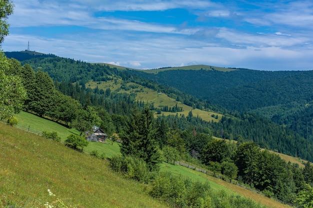 Schöne sommerlandschaft des dorfes unter karpaty-bergen.